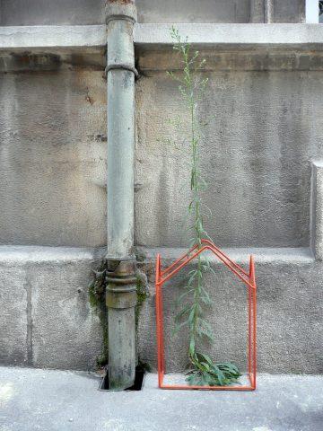 urbangreen01