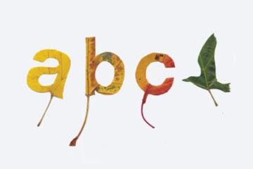 leaf-typographypre