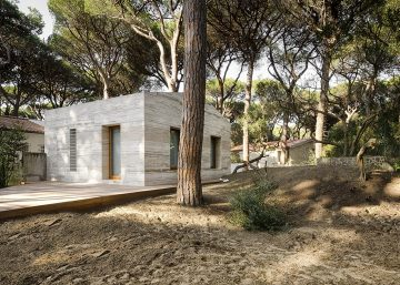 House-in-a-Pine-Wood04