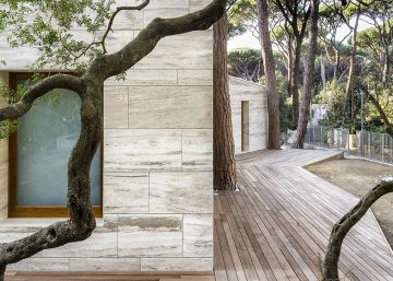 dezeen_House-in-a-Pine-Wood01