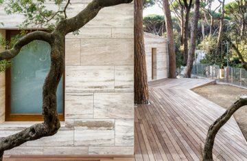 dezeen_House-in-a-Pine-Woodpre