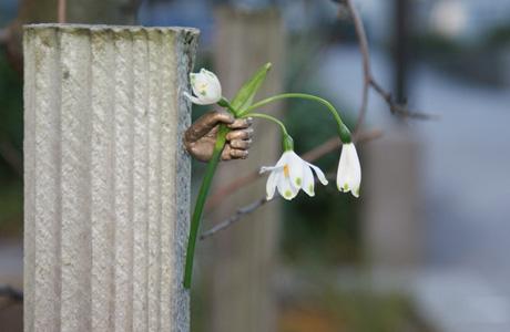 Ornamental Thoughtfulness