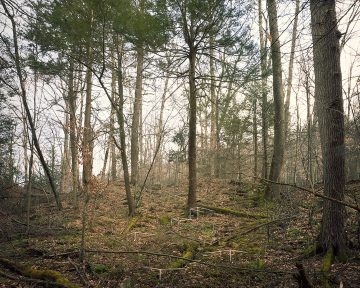 axiom_and_simulation03