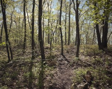 axiom_and_simulation04