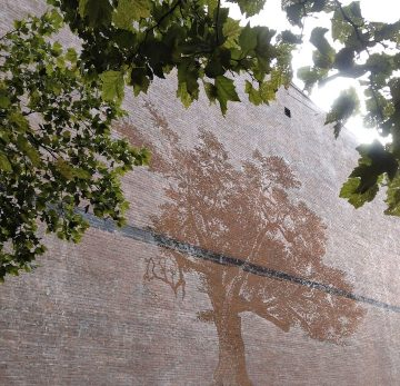 Rain_02