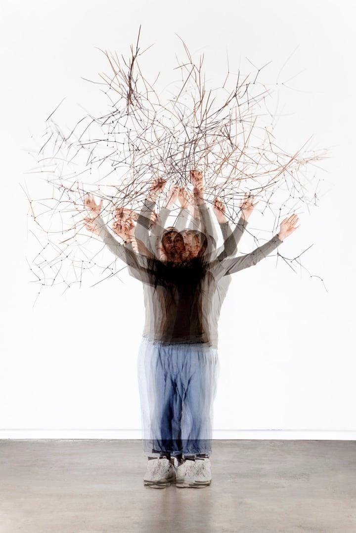 Temporary Trees02