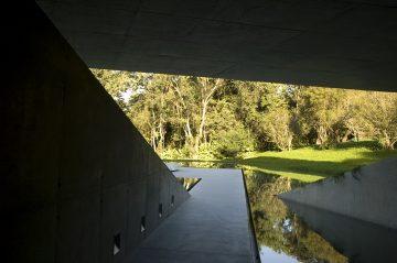 Galeria Adriana05