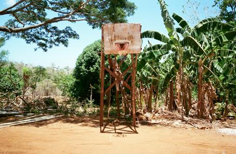 Lost Hoops by Skenderovic