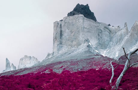 Reuben Wu's surreal world