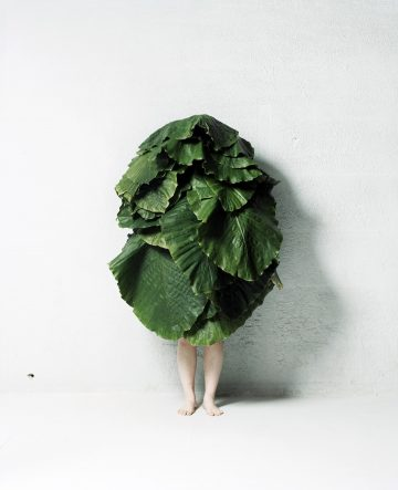 leafman04