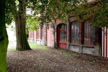 Frederikvercruysse11