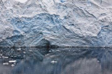 arctic11