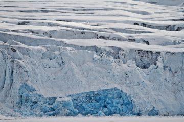 arctic24