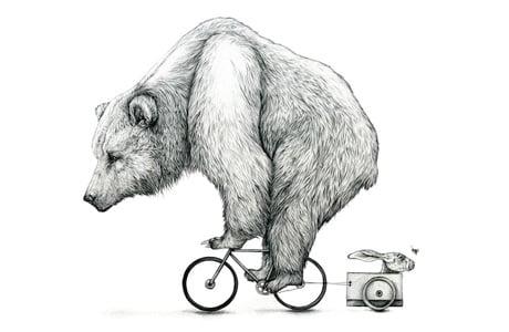 Bear Biking von Amy Dover