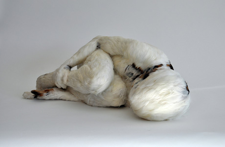 Featherchild by Lucy Glendinning