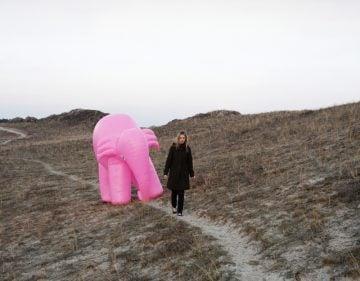 elephant04