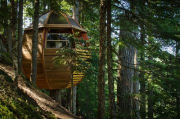 Tinyhomes10