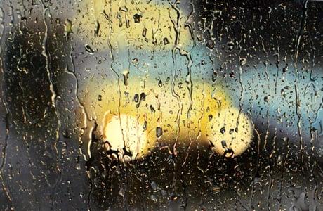 Rainy Paintings by Shay...