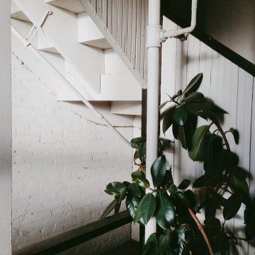 Adrian Ragasa_Instagram_10