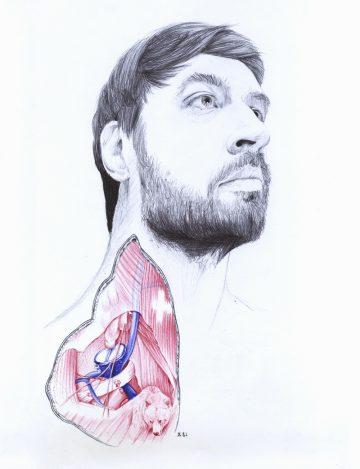 Anatomy_of_04