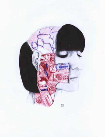 Anatomy_of_08