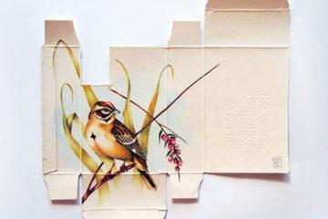 Sara_Landeta_Birds_pre