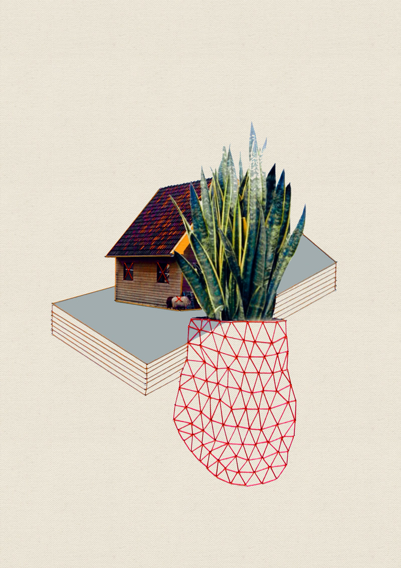 Happy–Red–Fish–House-and-plants_04