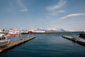 Marcos Zotes-Reykjavik-mb!_002