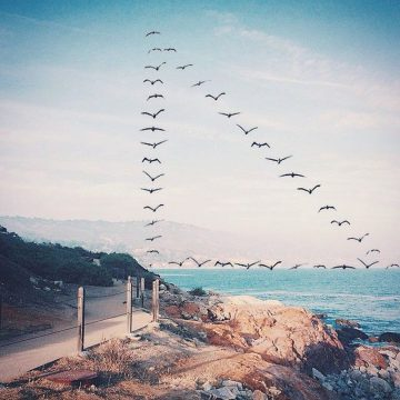 Shaun_Kardinal_Flying_Formation_04