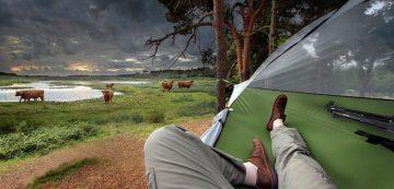 Tree_Tent_04