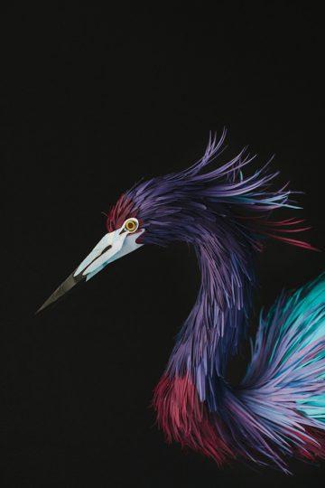 DIANA_BELTRAN_HERRERA_Paper_Birds_Art_03