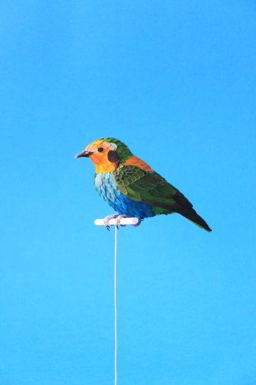 DIANA_BELTRAN_HERRERA_Paper_Birds_Art_04