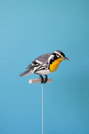 DIANA_BELTRAN_HERRERA_Paper_Birds_Art_05