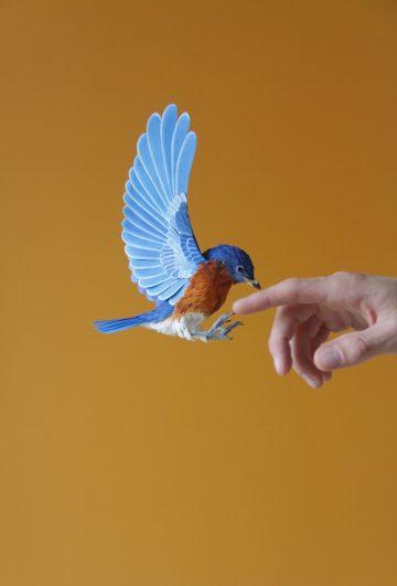 DIANA_BELTRAN_HERRERA_Paper_Birds_Art_06