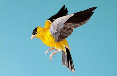 Realistic Paper Birds by Diana Beltran Herrera