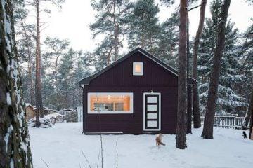 Waldhaus im Kiefernwald