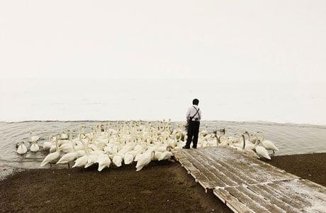 Patience by Josef Hoflehner