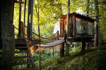 Peter_Bahouth_Treehouse_01