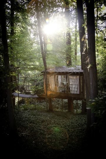 Peter_Bahouth_Treehouse_11
