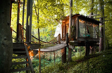 Peter_Bahouth_Treehouse_pre