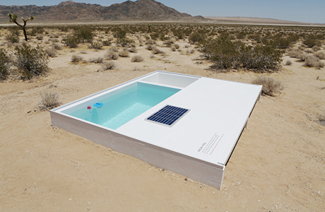 Social Pool by Alfredo Barsuglia
