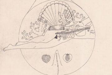 harrietleemerrion-illustration_pre