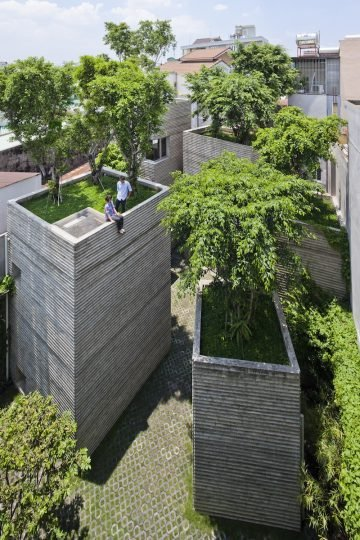 House_For_Trees_06