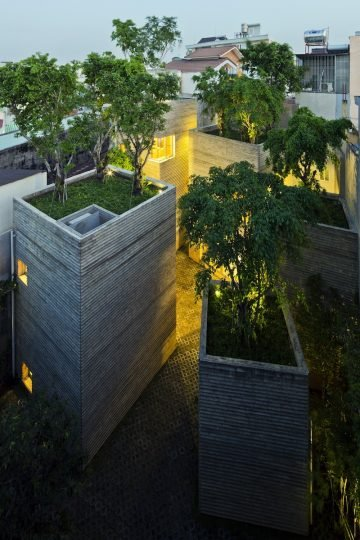 House_For_Trees_09