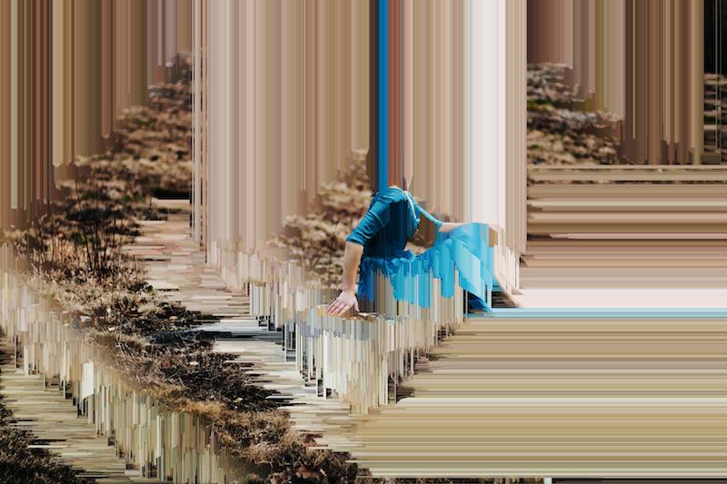 metamorphosis visual perception and aesthetic autonomy Aesthetics as a theory of perception he denies aesthetic autonomy and a critique of the subjectivity of aesthetic experience or pragmatics of visual.