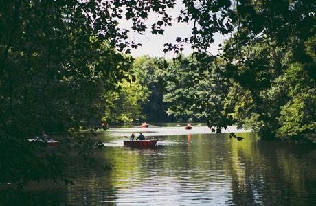 Top 5 Hidden Green Spots in Berlin