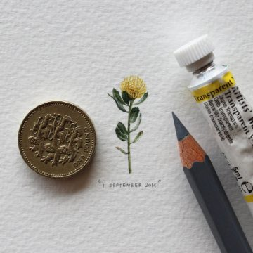 lorraine_Loots_Postcards_For_Ants_07