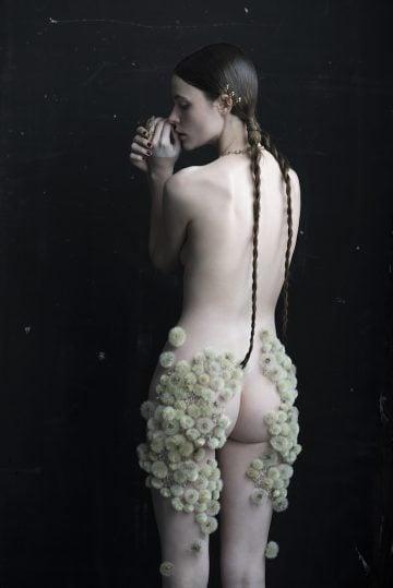 Dandelion- Isabelle- Chapuis_02