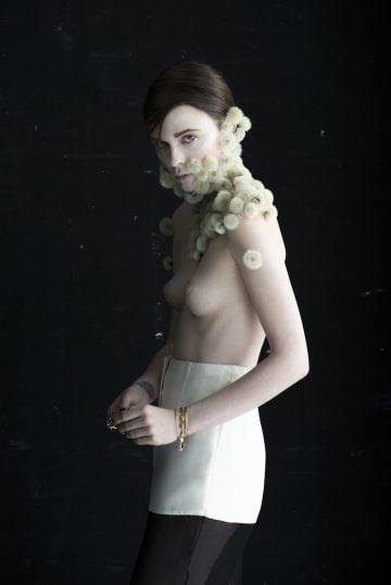Dandelion- Isabelle- Chapuis_06