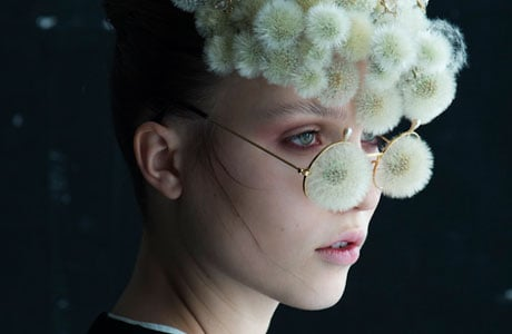 Dandelion by Isabelle Chapuis and Duy Anh Nhan Duc